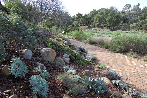 Santa Barbara Botanical Gardens