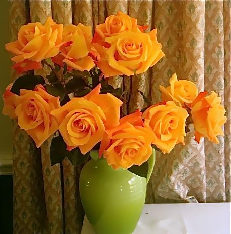 ecuador-flowers