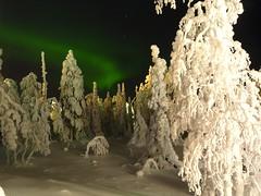 Northern Lights (timo_w2s) Tags: longexposure snow night finland lapland kuusamo northernlights auroraborealis ruka revontulet