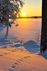 DSC_0837 (Siroccosky) Tags: christmas xmas winter snow skiing sweden logcabin snowmobile varmland