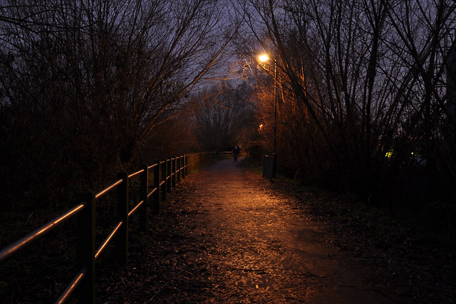 path in the evening