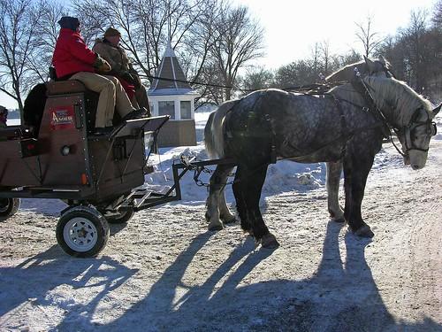 Winter Kite Festival 2010 rocking horse