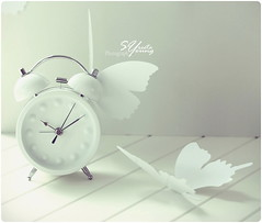 Take time to dream..... it is the breath of happiness!