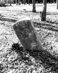College Memorial Park Cemetery, Houston, Texas 0101111418BW (Patrick Feller) Tags: collegememorialpark cemetery grave yard burial houston harriscounty texas black africanamerican afroamerican american negro slave formerslave emancipation civilwar sesquicentennial segregation jimcrow flag veteran united states north america
