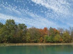 a day in edon (birchloki) Tags: trees light ohio sky cloud tree nature clouds forest forests edon edonohio