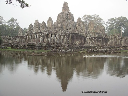 swans in front of Bayon temple c