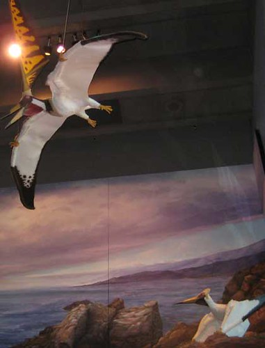 (Not So) Old Paleoart at MOS - Nyctosaurs