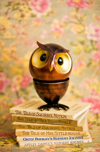 Thoughtful owl on a pile of books ~ for Owl Friday
