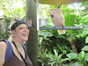 R. Sky Palkowitz with Cockatoo in Miami South Florida (RYANISLAND) Tags: wwwjungleislandcom jungleisland jungle jungles island islands 305 areacode305 33132 zipcode33132 southflorida florida miami miamiflorida tropics tropical bird birds tropicalbird tropicalbirds colorfulbird colorfulbirds parot parrot parots parrots psittacines animalia chordata aves neognathae psittaciformes cacatuidae cockatoos psittacidae trueparrots strigopidae newzealandparrots parrotmacaw macawparrot macaw wildanimal wildanimals animalphotography nature pet pets animal animals feather feathers birdwatching photography naturephotography cockatoo peta birdcage fly flying wing wings naturalbeauty