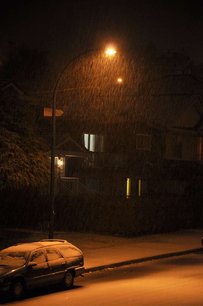 snow in the streetlight