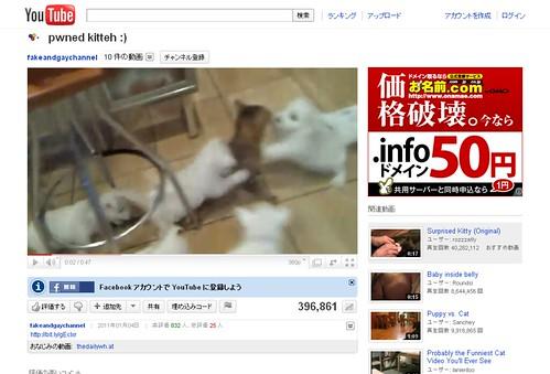 YouTube - pwned kitteh -)_1295262935516