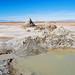 Salton Sea - Mud Pots and Gryphons