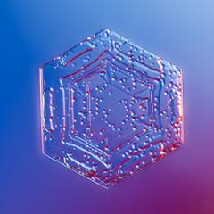 Snowflake (linden.g) Tags: snowflake snow frozen crystal lindengledhillcom httpwwwlindengledhillcom