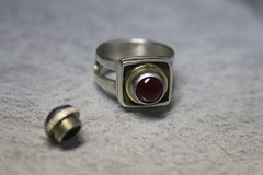 Ring for Tim (vikafogallery) Tags: