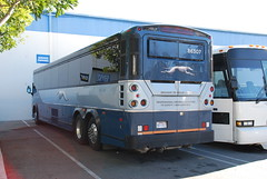 GLI 86307 (crown426) Tags: california greyhound motorcoach mci losalamitos greyhoundlines d4505