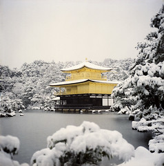 (yocca) Tags: winter snow film topf25 japan wow t temple kyoto kodak 100v10f hasselblad   kinkakuji  2010 1000views goldenpavilion rokuonji 500cm carlzeiss portra400 plannar   dec2010