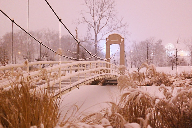 Suspension bridge, in Forest Park, Saint Louis, Missouri, USA - view at night with snow