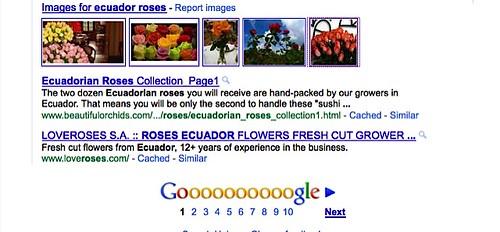 ecuador-valentine-roses