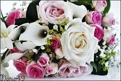 Bouquet de la marie. (nanie49) Tags: angers france francia mariage matrimonio boda wedding portrait nanie49 nikon d750 bouquet ramo straus buqu   mazzo