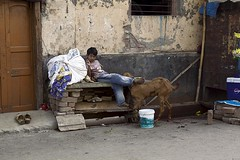 street4 India (annabulka) Tags: world street boy people india man colour animal animals contrast photography photo kid asia shot poor tourist lonelyplanet chldren 5photosaday colorphotoaward annabulka studio999travel