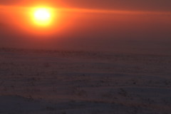 Blizzard Sunset (Prairie Jerry) Tags: sunset halo odd northdakota groundblizzard