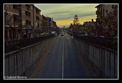 Herreria_Ektar_007-Edit (Gabriel Bonino) Tags: autumn forest sunrise landscape nikon kodak scanner paisaje colores amanecer otoño 100 nikonfe robles elescorial ektar ojas roble epson4490 forestlandscape laherreria