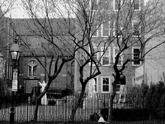 Three Trees (al-absi) Tags: blackandwhite bw church saint boston cross massachusetts jesus olympus littleitaly 1442 hanoverst e620
