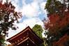 @Joruriji-temple, Kyoto, 浄瑠璃寺