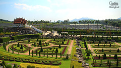 Pattaya (3)