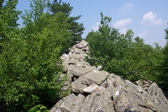 Knife edge - typical PA rocks (and trail)