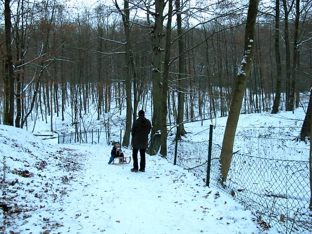 Winter 2010, December