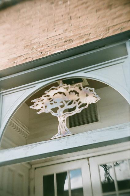 Art Nouveau Tree [Payson 17/52]