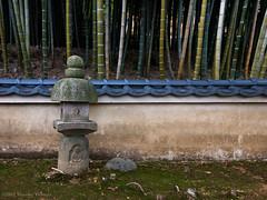 boundary (- yt -) Tags: japan wall night kyoto places bamboo arashiyama 京都 嵐山 litup 化野念仏寺 ライトアップ adashino 花灯路 塗り壁 化野 nembutsujitemple