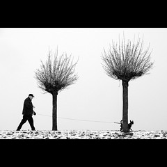 (Hans van Reenen) Tags: trees winter people bw dog snow tree germany deutschland cine dijk dike deich niederrhein arbolitos walkingthedog k7 orsoy fav100 silkypixpro 20101202