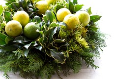 lime christmas wreath (Sados da Concha) Tags: christmas xmas green yellow natal navidad natural handmade ivy noel holly wreath homemade handcrafted lime coroa hera limas caseira azevinho