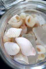 Nature in a Bottle (Dawn Suzette) Tags: giftsfromnature themagnifyingglass