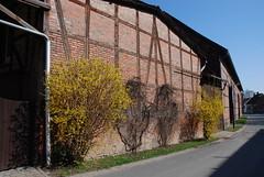 Eilum Kr.Wolfenbüttel 100407 017