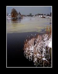 Landschap (Theo Kelderman) Tags: holland haarlem netherlands spaarne canon sneeuw nederland riet landschap 2010 schalkwijk theokeldermanphotography