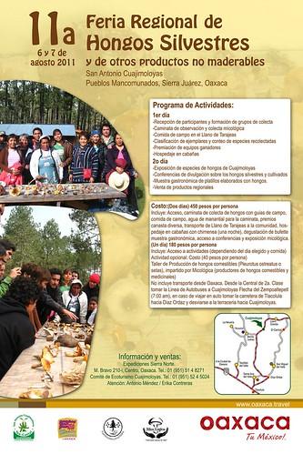 Feria Regional de Hongos Silvestres