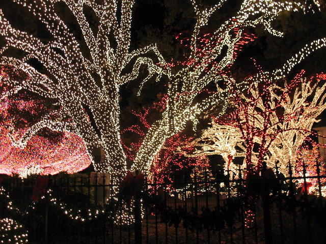 Christmas lights in Fort Worth
