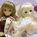 DollsParty24-DSC00773
