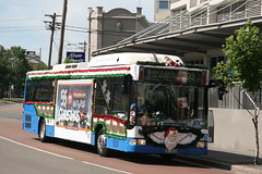 One of ten or twelve Christmas Buses for the year 2010. A State Transit Authority (Sydney Buses) Mercedes O405NH (CNG) gas bus No 1210 on a Route 393 to Maroubra Junction Via Anzac Parade in Anzac Parade, Kensington, Sydney N.S.W. Australia.