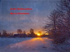Weihnachtsgruss (hans 1960) Tags: christmas schnee trees winter sun snow sol sunrise germany weihnachten landscape deutschland soleil hiver natur noel landschaft sonne bume sonnenaufgang