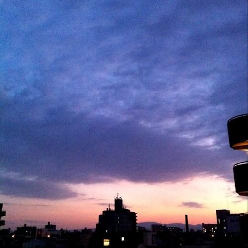 今日の写真 No.113 – 昨日Instagramに投稿した写真(4枚)/iPhone4 + Photo fx、CAMERAtan