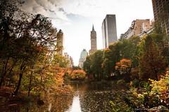 New York (mavier arts) Tags: newyork newjersey unitedstates sanjuanhill sanjuanhillnewyork centralparkcenterdr centralparkcenterdrsanjuanhillnewyorknewjerseyuni centralparkcenterdrsanjuanhillnewyorknewjerseyunitedstates