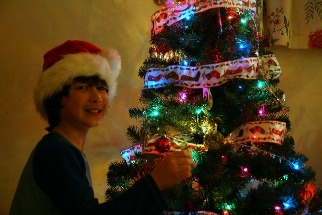 Adam and his tree