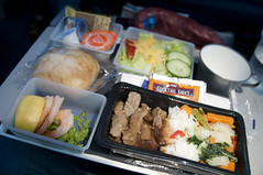 Airline Meal, Delta Airlines