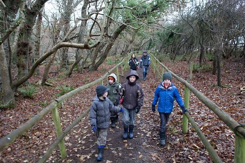 Trail at Tyneham