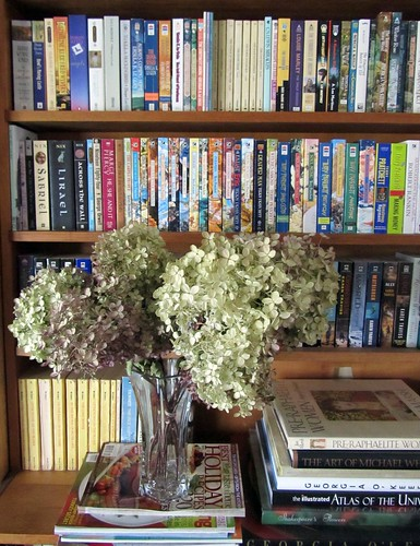 Dried Hydrangeas & Books