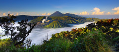 Bromo (tropicaLiving - Jessy Eykendorp) Tags: morning blue light green nature fog sunrise canon indonesia landscape photography eos volcano nationalpark sand asia southeastasia desert outdoor caldera lee tropical malang filters volcanic 1022mm gravel surabaya bromo active tengger mountbromo mountsemeru eastjava 50d mountbatok mountpananjakan